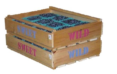 Blueberry Crates